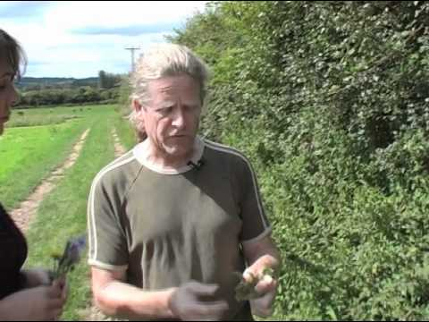 Growing Green with Iain Tolhurst