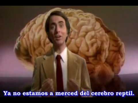 3 Música Para Ateos. Sinfonía de la Ciencia. Una Oda al Cerebro.