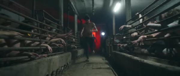 All the blood (positive song actually), canción vegana en Eurovisión