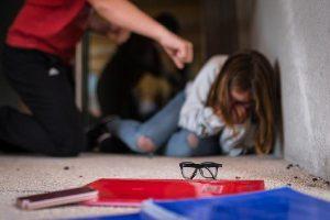 Bullying: vegefobia y vegafobia