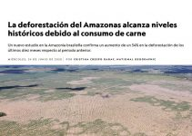 La carne causa la deforestacion de la Amazonia