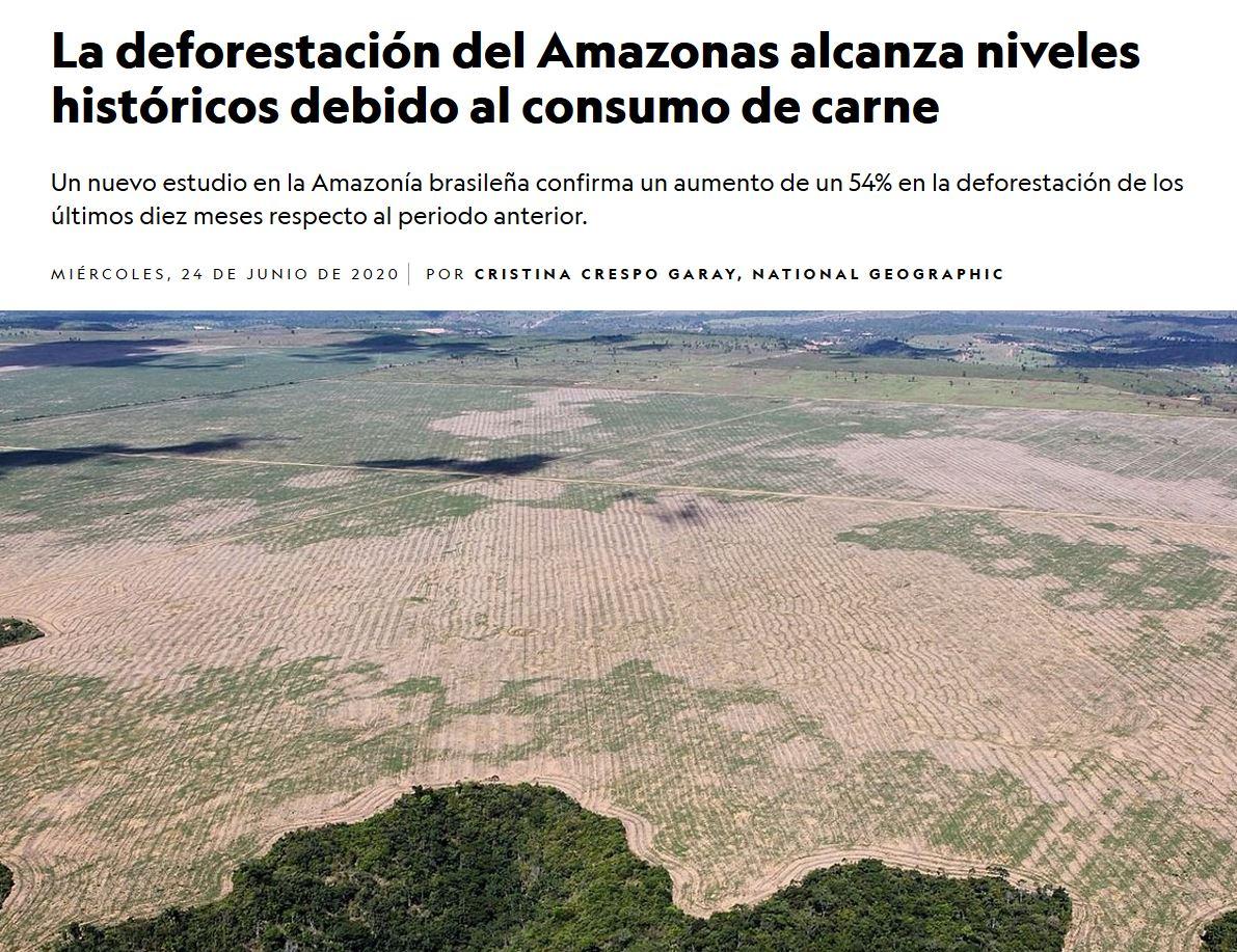 La carne y la deforestación de la Amazonia