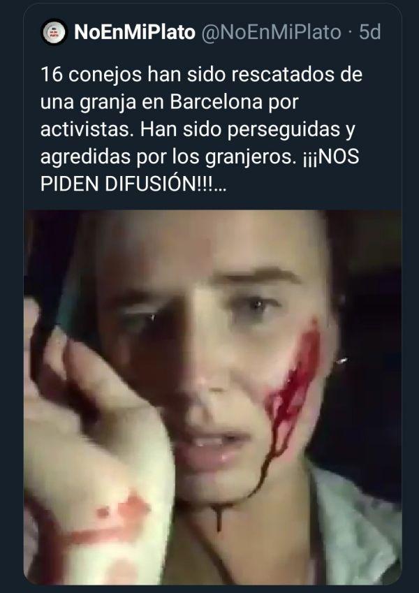Algunos activistas han sido agredidos