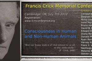 Declaracion de Cambridge sobre la Conciencia (2012)