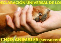 Declaración Universal de los Derechos Animales