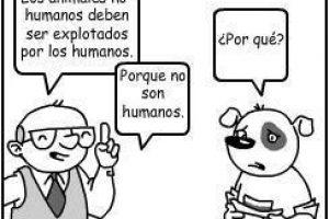 """ARGUMENTO: """"Es éticamente correcto explotar y matar a los animales porque no son humanos"""""""