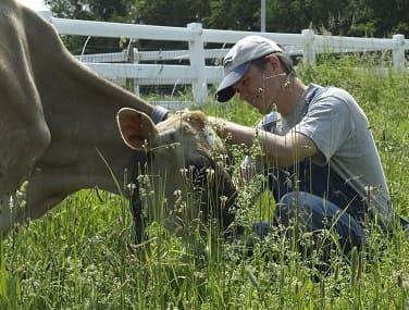 De ganadero a vegano: Harold Brown