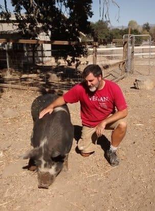 granjas veganismo - Matt Bear