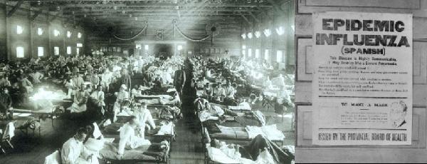 Enfermedades zoonóticas: gripe española