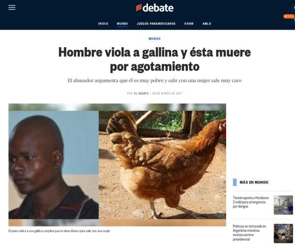 Hobre viola a una gallina y ésta muere