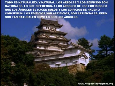 Los edificios son naturales