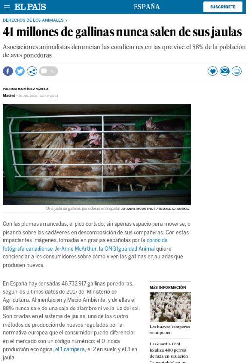 La situación de las gallinas en España (2017)