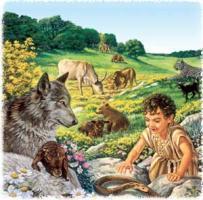 Los Testigos de Jehová y el Paraiso vegano