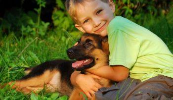 Debemos respetar al niño y al perro