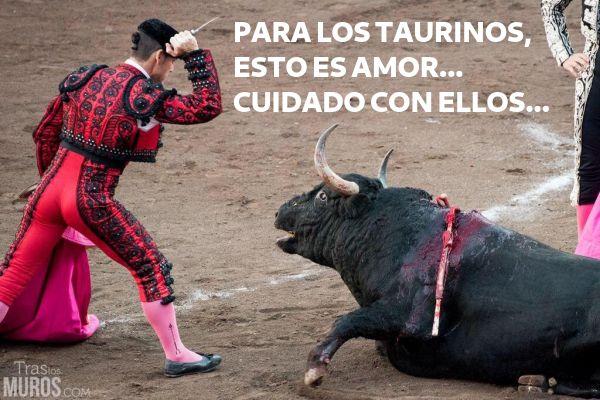 Los taurinos dicen que aman a los toros...