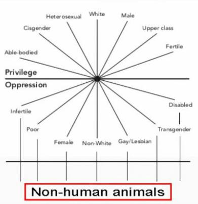 Veganismo interseccional